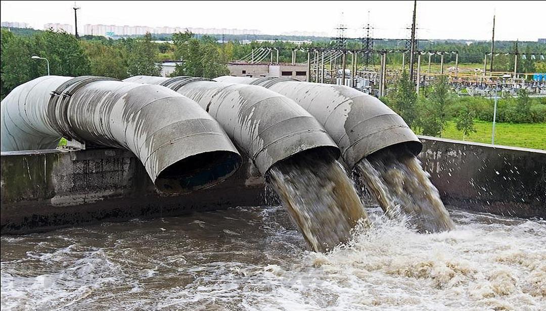 Сколько дней коронавирус может жить в речной воде?